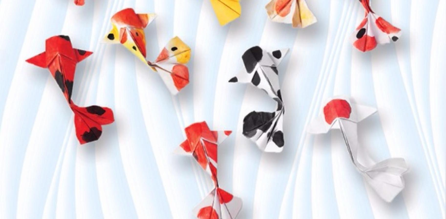 Sketch to cake nade jankovska s origami koi fish inspired for Koi fish culture