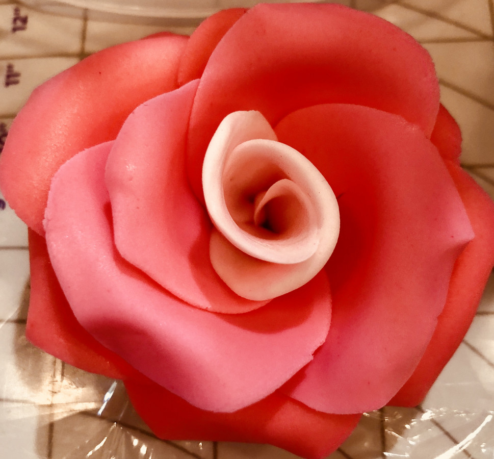 Easy Fondant Rose Tutorial! Seriously...my 7-Year Old Just Did It!!
