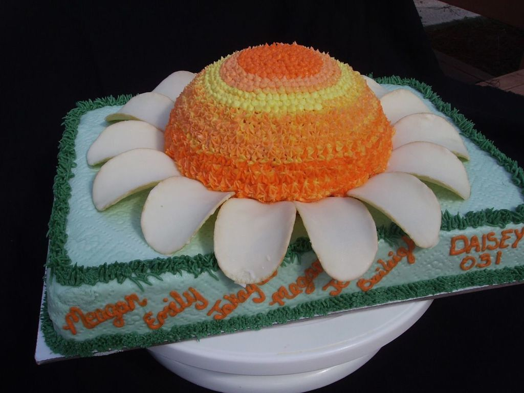 Daisy flower girl scout cake cakecentral izmirmasajfo
