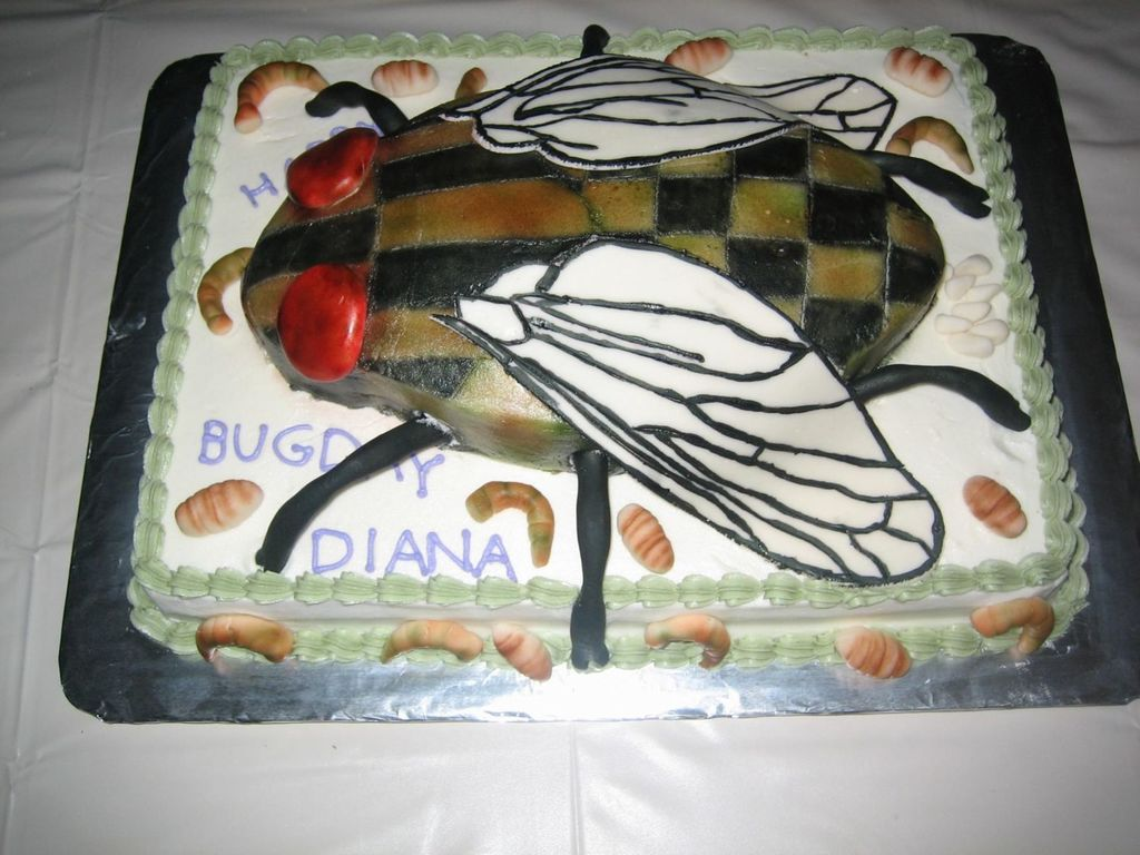 Amazing Gross Bug Cake Cakecentral Com Personalised Birthday Cards Arneslily Jamesorg