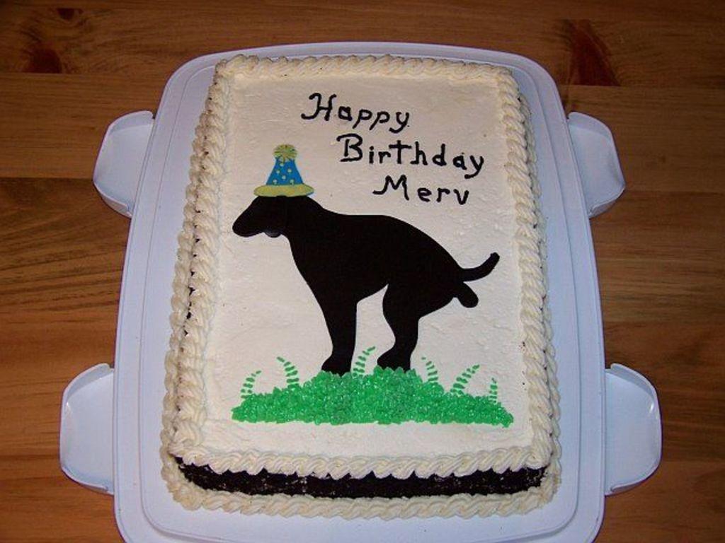 Miraculous Funny Birthday Joke Cake Cakecentral Com Funny Birthday Cards Online Inifodamsfinfo