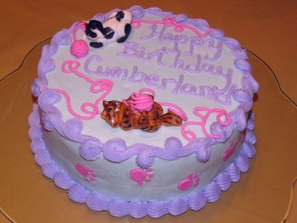 Marvelous Kitten Birthday Cake Cakecentral Com Funny Birthday Cards Online Necthendildamsfinfo