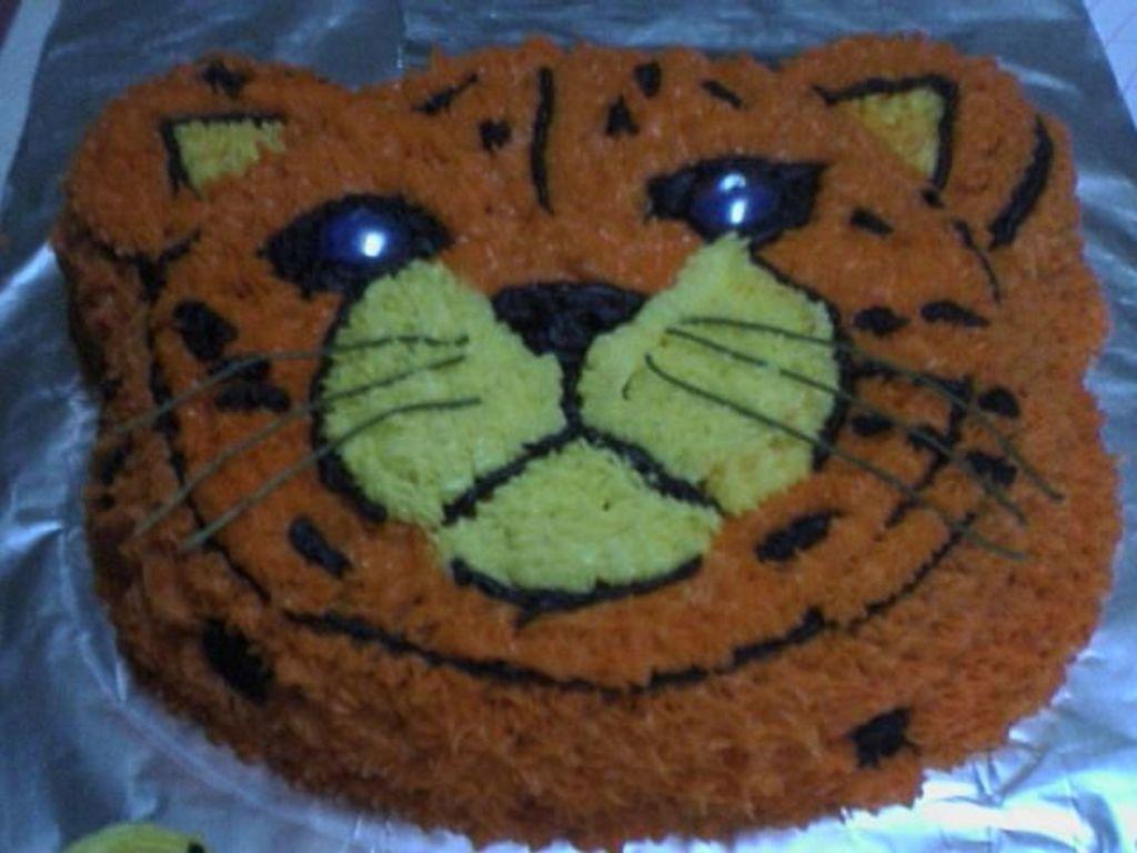 Strange Cheetah Birthday Cake Cakecentral Com Personalised Birthday Cards Vishlily Jamesorg