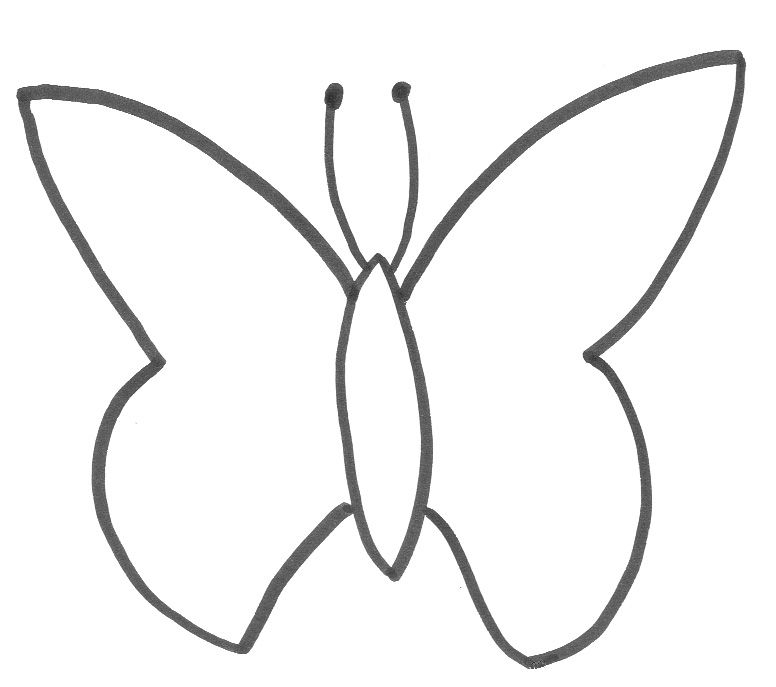 Basic Butterfly Template CakeCentral – Butterfly Template