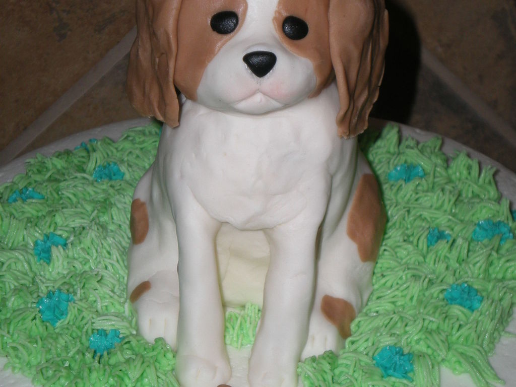Cavalier King Charles Spaniel Puppy Birthday Cake CakeCentralcom