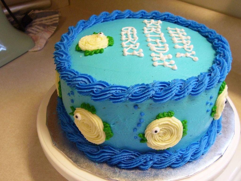 Tremendous Fish Aquarium Birthday Cake Cakecentral Com Funny Birthday Cards Online Necthendildamsfinfo