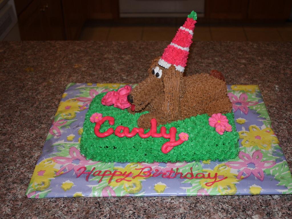 Pleasant Dachshund Birthday Cake Cakecentral Com Funny Birthday Cards Online Unhofree Goldxyz