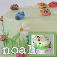 Noah Okay. This is definitely my fav cake yet - it was sooo FUN to do! I had a blast making the ladybugs - who would have thought bugs were so...