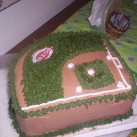 Markbdb.jpg Baseball Field for a Cin. Reds fan's birthday.