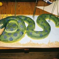 Hungry Anaconda For my nephew's 12th birthday. He wanted a anaconda that was eating him. Fun cake. feet and legs are rice crispies covered in fondant...