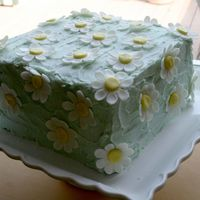 Daisy Birthday Cake Buttercream with MMF daisies.