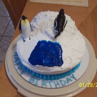 Penguin Birthday Cake Here is a quick cake I put together for my sisters birthday. Its a vanilla cake with buttercream icing.