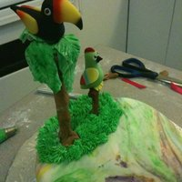 Tucan   Parrot and tucan
