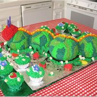 The Very Hungry Caterpillar This was for my baby's first birthday...a garden theme. (Her name is Ivy!) Used the ball pan and had coordinating cupcakes. Missing on...