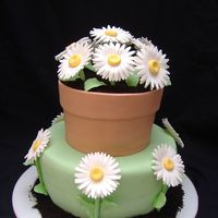 Gerber Daisies And Flower Pot White cake with buttercream frosting, fondant covered and with gumpaste daisies, leaves, stems etc. chocolate cookie dirt. This was a free...