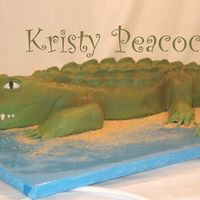 Go Gators Four Foot Gator. Made with creamy white cake and covered in fondant. Would have been easier with an airbrush! I'm getting one soon!...