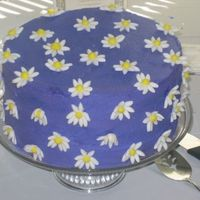 "I Love Purple!!  2 - 10""x3"" deep cakes for height. THen iced with dark purple BC. Made white fondant daisies that I placed in an egg carton to get..."