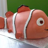 Clown Fish (Aka Nemo) fondant with painted detailing (eye detail, black detail) over carved chocolate cake