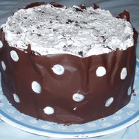 Chocolate Spotted Collar Cake for my family, easter sunday. It is blue ribbon moist and fudgey chocolate cake recipie from cc.com cookies and cream filling and topping...