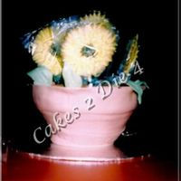 Potted Sunflower Cake Pot made of Chocolate cake filled with Kahlua Chocolate Ganache and raspberry filling. Chocolate cookie crumbs used for dirt. Coverred in...