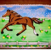 Pony Cake  Sheet Cake w/ BC icing, the flowers and fence posts are made ofroyal icing. I used the invitation as a guide. All my 3 yr old neice...