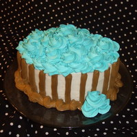 Teal And Brown Oval Cake This was a practice cake!
