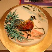 Pheasant Cake Hand painted cake of an argus pheasant. I kept the food coloring very runny to get the watercolor look. I highlighted with colored frosting...