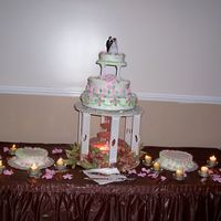 My First Wedding Cake  Briauna and Dennis WeddingAfter taking only one class I decided to do my daughters wedding and grooms cake, and here are the pictures....