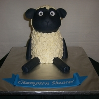 "Sheep  This was inspired by a cake done by Springlakecake. Stacked and carved from an 11 inch square cake. Fondant with buttercream ""wool&..."