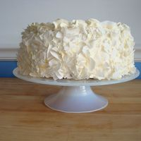 White Chocolate Coconut Cake This is a favorite in our household and I wanted to practice my food photgraphy. I used large flaked coconut for the outside so there would...