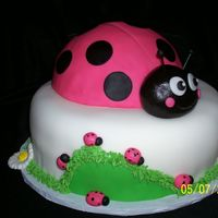 "Ladybug Cake For A Little Lady  This is a 2 layer chocolate 9"" cake covered in fondant. The ladybug is made with a half ball pan. The mom had purchased a ladybug..."