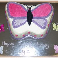 Butterfly Choc cake with bc icing.