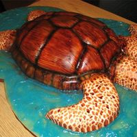 Sea Turtle   Fudge marble cake, carved as sea turtle, covered in fondant and hand painted.