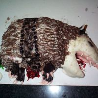 Road Kill Possum This was a suprize for my friend's birthday. Got the idea from Jenn123's cake. My friend has a thing with possums...alive or dead...