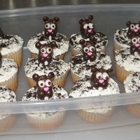 Groundhog Day Cupcakes The instructions for these cupcakes are from Family Fun Magazine's website. The groundhogs are supposed to be Almond Joy bars, but I...