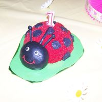 Ladybug Smash Cake  I did this for my Baby Girl's 1st Birthday. I made the body from half of the sports ball pan and the head is made out of MMF. I...