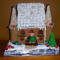 Gingerbread Castle  My son won 1st place in local Gingerbread contest. He was able to have adult assistance and my mom and I helped. We were quite pleased with...