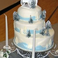 Winter Wonderland A picture similar to this cake was brought to me by the bride and I am sorry I don't know who to give my inspirational credit to. Her...