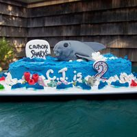 Shark Attack! This was inspired by several cakes on this site - thanks ladies! Done for a co-worker's 2 year old - the whole party was cake inspired...