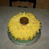 Sunflower Cake I made this cake for my mother's 55th birthday. She loves sunflowers. This was a first for me, cutting all the petals and letting it...