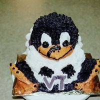 Hokie Bird Cake For steve:)