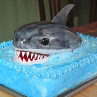 Shark Cake Ooo Ah Ah! My 5th cake. Not perfect, but I was very proud to carry it into the party. I had hubby estimate the weight, about 14 pounds. Even the...
