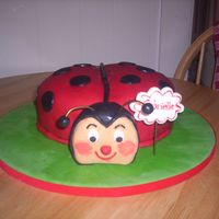 Ladybug Birthday Cake A friend emailed me a picture and wanted this cake for her daughters first birthday.