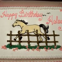 Haley's B-Day Cake This is a half sheet cake, 1/2 choc. and 1/2 white. The horse is a FBCT of a coloring book picture. All of the rest of the decorations are...