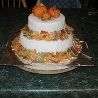Fair Entry This is my very first fair entry. It was kind of funny, because I won first place,but I was the only one to enter a decorated cake. Well,...
