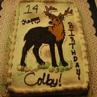 Camo Cake This is a chocolate cake mix done with extender recipe on this site. FBCT, BC, airbrushed.