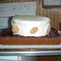 """s'mores"" Cake I made this for my Nieces' birthday, but it started ""melting"" because it decided to be hot on the day of the party. I'..."