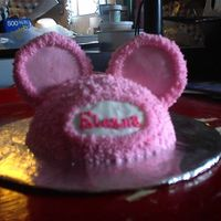 Niece's Smash Cake My brother asked that I make a special cake for the birthday party. I figured, since they went with a Minnie Mouse theme, I would make...