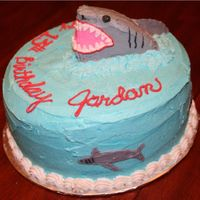 Shark Cake I DID THIS FOR A BOY WHO WAS GOING IN A SHARK TANK FOR HIS BIRTHDAY! YIKES! I JUST USED SOME OF THE EXTRA CAKE I HAD AFTER LEVELING THE...