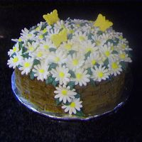 Basket Of Daisy's For Mom Great for Mom who likes sweet treats and flowers!
